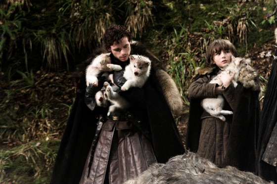 game of thrones hbo dire wolves. game of thrones hbo dire