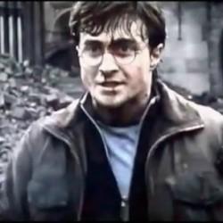 Harry Potter vs. Halo