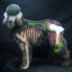 Pic of the Day: Zombie Poodle