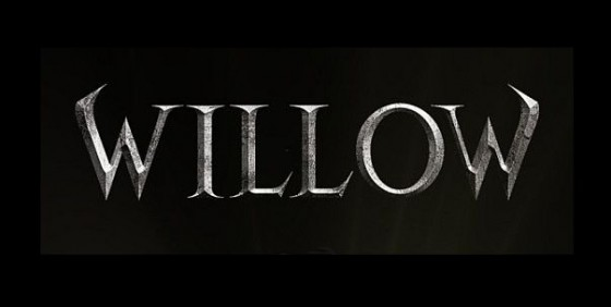 Willow logo wide