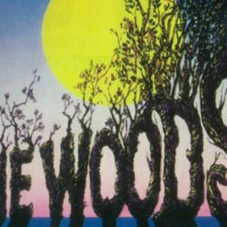 Star Trek and Source Code Stars in Talks to Play Princely Brothers in INTO THE WOODS