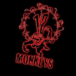 Syfy Places Order for Time Travel Series 12 MONKEYS