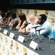 The Walking Dead sdcc 2013 panel