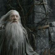 The Hobbit TDOS 008 Gandalf