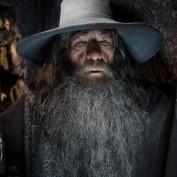The Hobbit TDOS 012 Gandalf