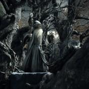 The Hobbit TDOS 022 Gandalf