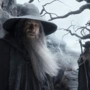 The Hobbit TDOS 030 Gandalf Radagast