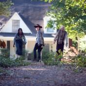 The Walking Dead 409 Carl walkers