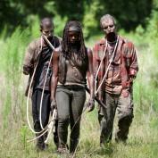 The Walking Dead 409 Michonne pets