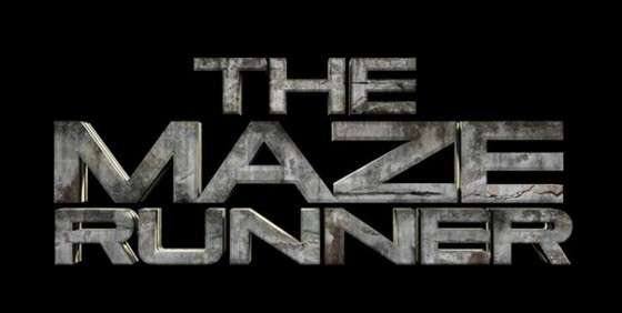 the maze runner wide
