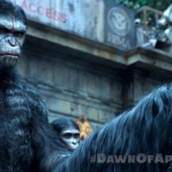 Apes Don't Want War in this New Clip from DAWN OF THE PLANET OF THE APES