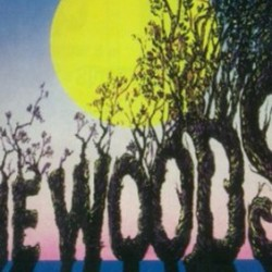 First Look At Meryl Streep's Witch in INTO THE WOODS